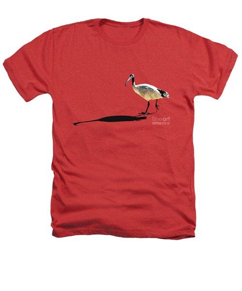 Bribie Island Ibis Heathers T-Shirt by Susan Vineyard