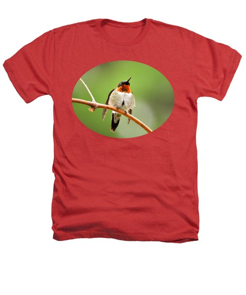 Male Ruby-throated Hummingbird Heathers T-Shirt by Christina Rollo