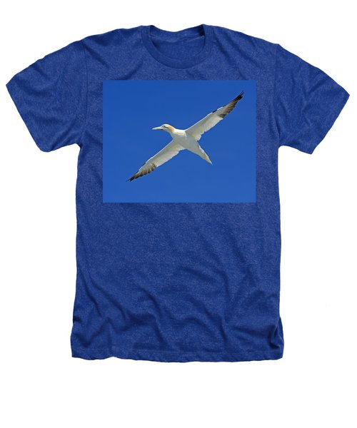 Northern Gannet Heathers T-Shirt by Tony Beck