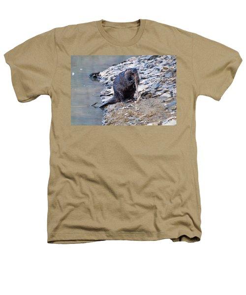 Beaver Sharpens Stick Heathers T-Shirt by Chris Flees