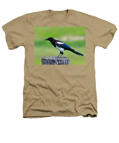 Black Billed Magpie Heathers T-Shirt by Karon Melillo DeVega