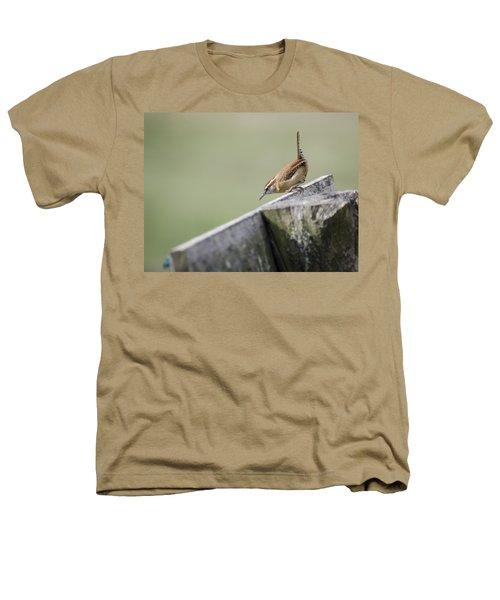 Carolina Wren Two Heathers T-Shirt by Heather Applegate