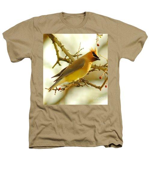 Cedar Waxwing Heathers T-Shirt by Robert Frederick