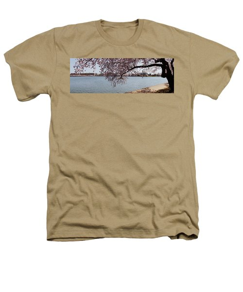 Cherry Blossom Trees With The Jefferson Heathers T-Shirt by Panoramic Images