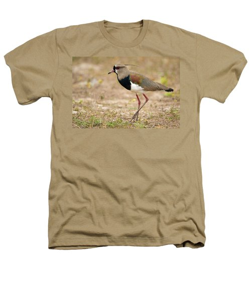 Close-up Of A Southern Lapwing Vanellus Heathers T-Shirt by Panoramic Images
