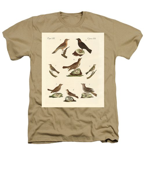 Different Kinds Of Larks Heathers T-Shirt by Splendid Art Prints