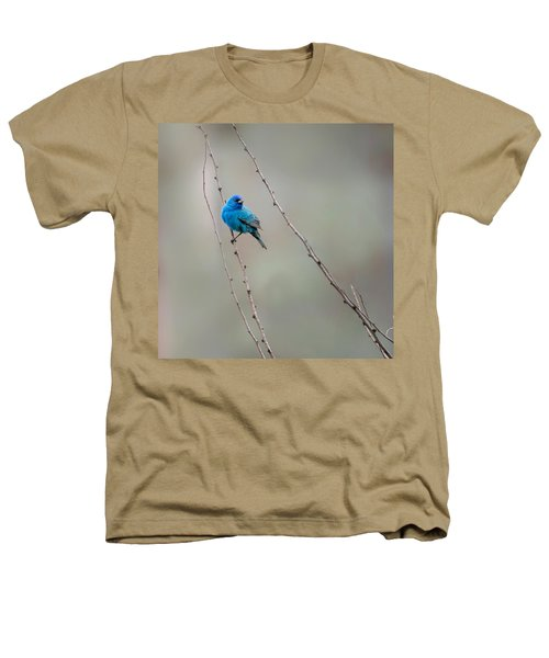 Indigo Bunting Square Heathers T-Shirt by Bill Wakeley