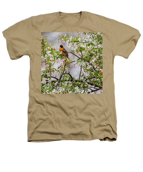 Oriole In Crabapple Tree Square Heathers T-Shirt by Bill Wakeley