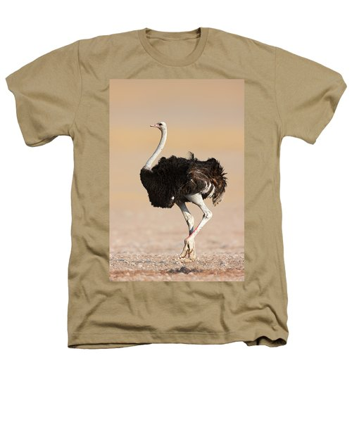 Ostrich Heathers T-Shirt by Johan Swanepoel