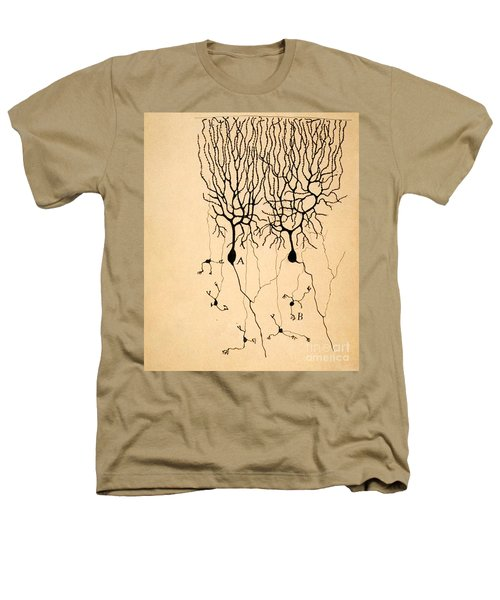 Purkinje Cells By Cajal 1899 Heathers T-Shirt by Science Source