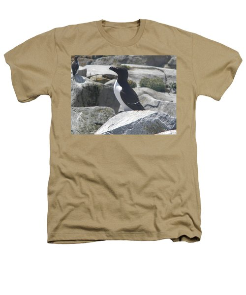 Razorbill Heathers T-Shirt by James Petersen