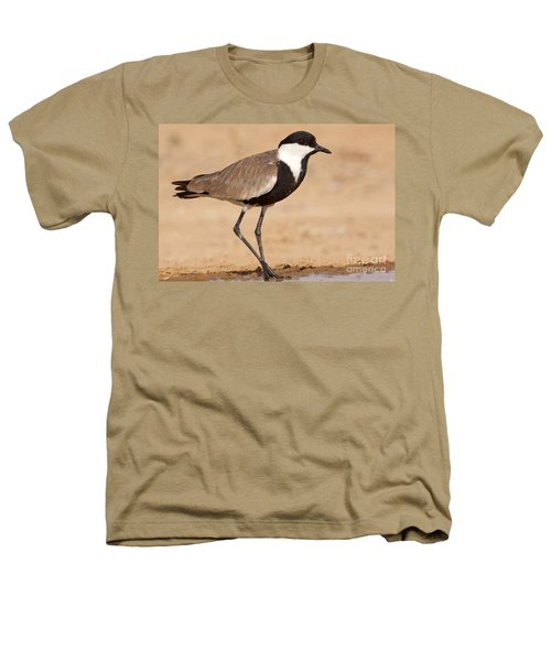 Spur-winged Lapwing Vanellus Spinosus Heathers T-Shirt by Eyal Bartov