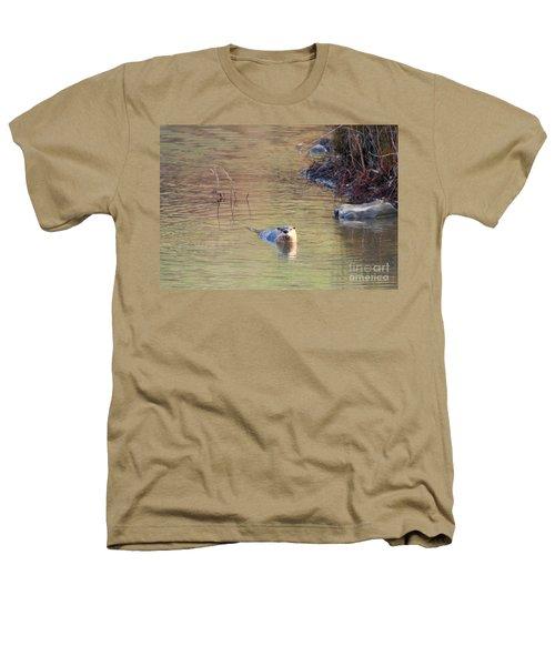 Sunrise Otter Heathers T-Shirt by Mike Dawson