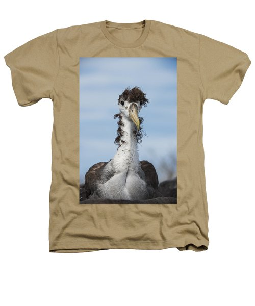 Waved Albatross Molting Juvenile Heathers T-Shirt by Pete Oxford