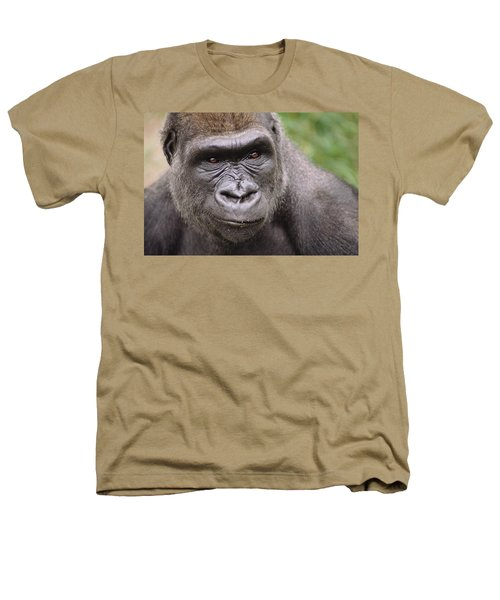 Western Lowland Gorilla Young Male Heathers T-Shirt by Gerry Ellis