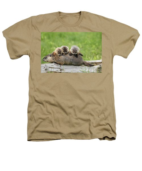 Woodchuck Carrying Young Minnesota Heathers T-Shirt by Jurgen & Christine Sohns