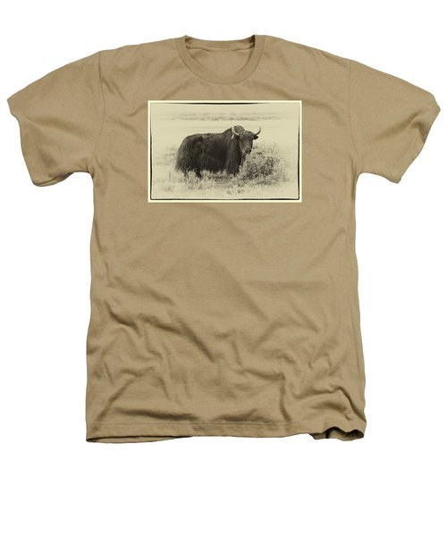 Yaks...the Official Animal Of Tibet Heathers T-Shirt by Alan Toepfer