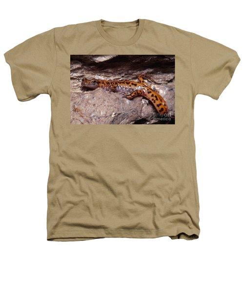 Cave Salamander Heathers T-Shirt by Dante Fenolio