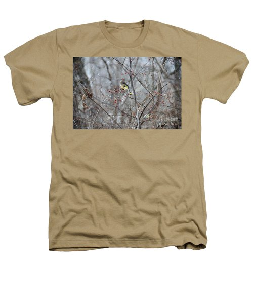 Cedar Wax Wing 3 Heathers T-Shirt by David Arment