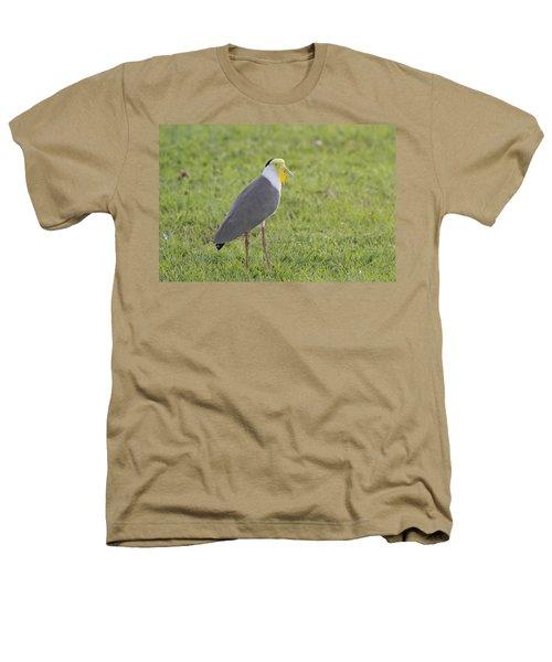 Masked Lapwing Heathers T-Shirt by Douglas Barnard