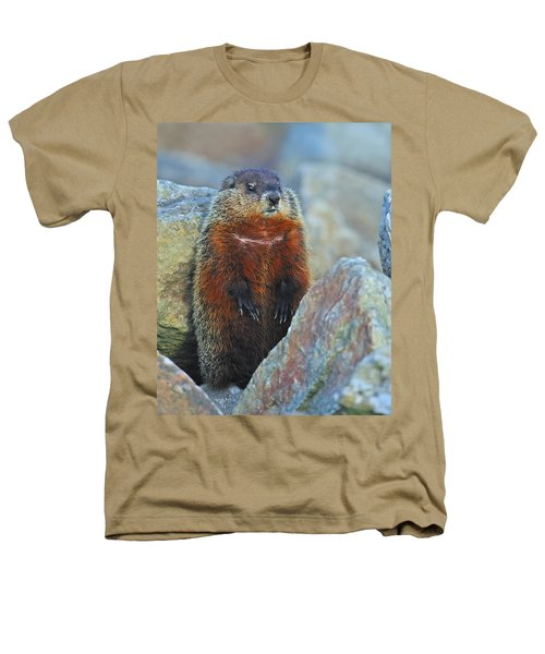 Woodchuck Heathers T-Shirt by Tony Beck