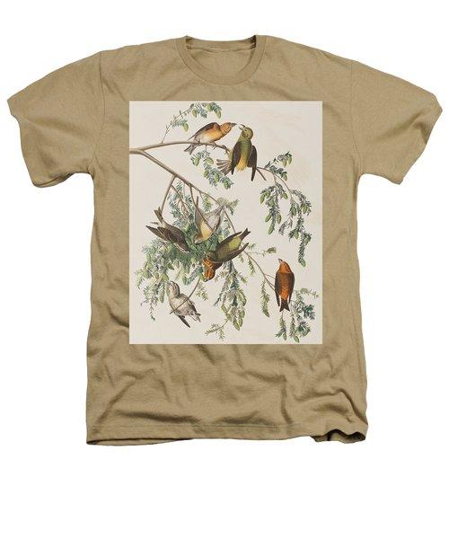 American Crossbill Heathers T-Shirt by John James Audubon