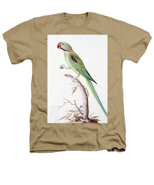 Alexandrine Parakeet Heathers T-Shirt by Nicolas Robert