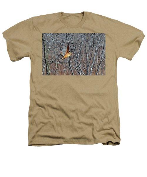 American Woodcock In Takeoff Flight Heathers T-Shirt by Asbed Iskedjian