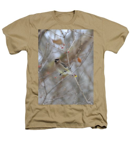 Cedar Wax Wing 2 Heathers T-Shirt by David Arment
