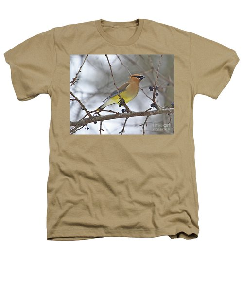Cedar Wax Wing-2 Heathers T-Shirt by Robert Pearson