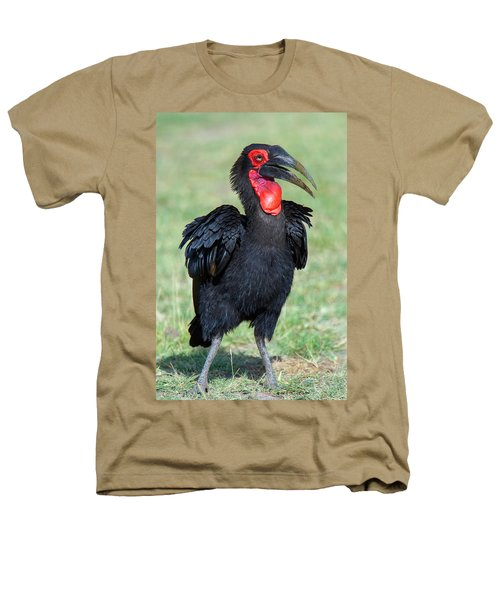 Close-up Of Ground Hornbill Bucorvidae Heathers T-Shirt by Panoramic Images