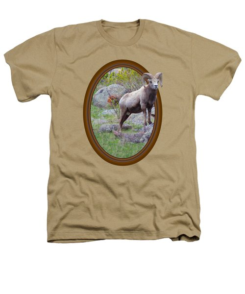 Colorado Bighorn Heathers T-Shirt by Shane Bechler
