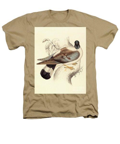 Columba Leuconota, Snow Pigeon Heathers T-Shirt by Elizabeth Gould