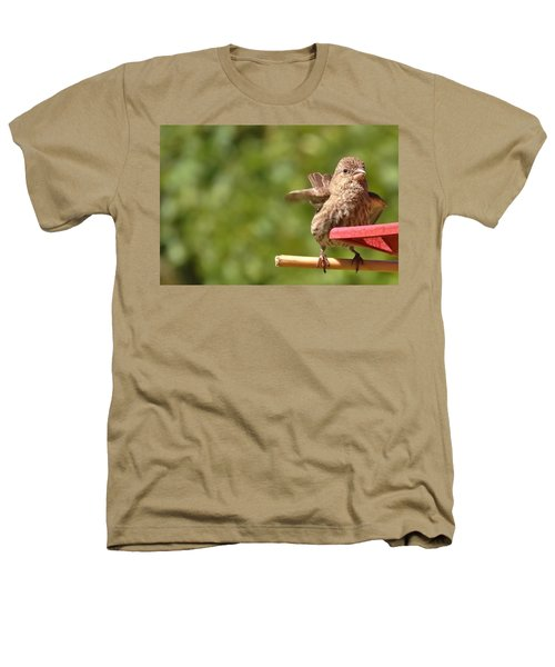 Crossbill Female At Feeder        Summer       Indiana Heathers T-Shirt by Rory Cubel