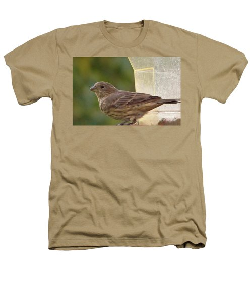 Crossbill Female Portrait      September    Indiana Heathers T-Shirt by Rory Cubel
