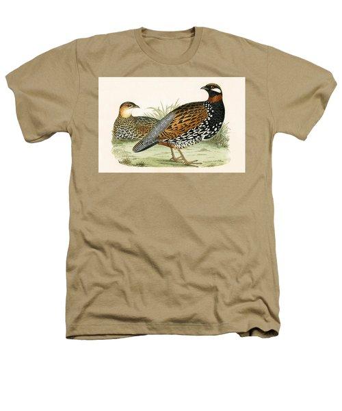 Francolin Heathers T-Shirt by English School