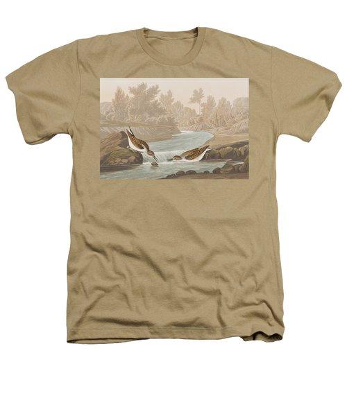 Little Sandpiper Heathers T-Shirt by John James Audubon