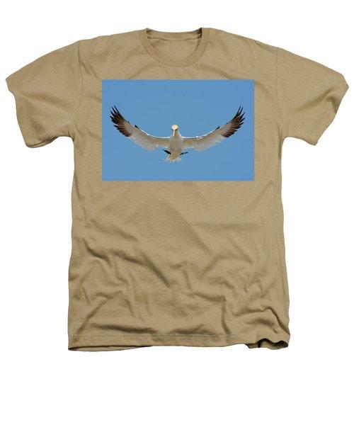 Maestro Heathers T-Shirt by Tony Beck