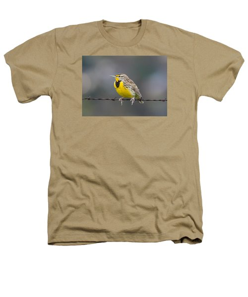 Meadowlark On Barbed Wire Heathers T-Shirt by Marc Crumpler