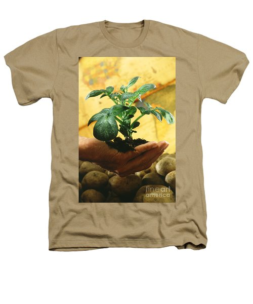 Potato Plant Heathers T-Shirt by Science Source