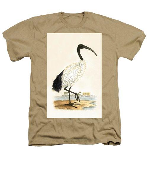 Sacred Ibis Heathers T-Shirt by English School