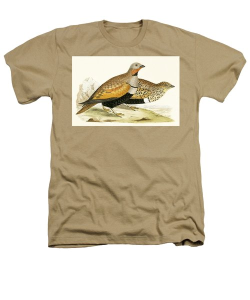 Sand Grouse Heathers T-Shirt by English School
