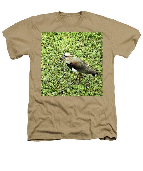 Southern Lapwing Heathers T-Shirt by Norman Johnson