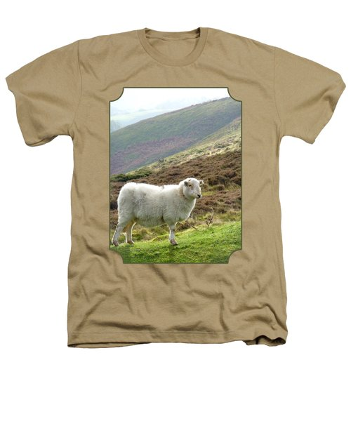 Welsh Mountain Sheep Heathers T-Shirt by Gill Billington