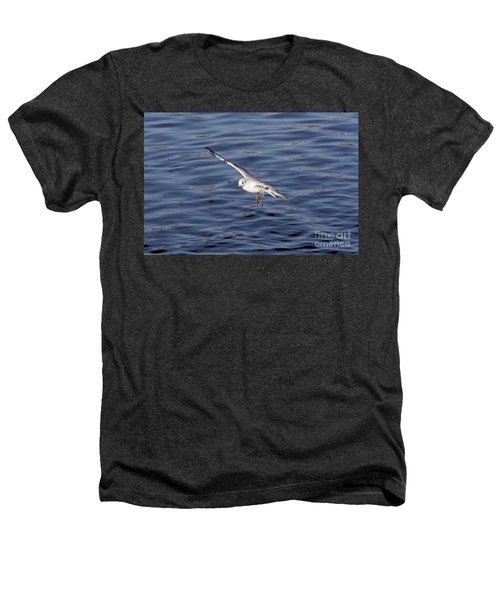Flying Gull Heathers T-Shirt by Michal Boubin