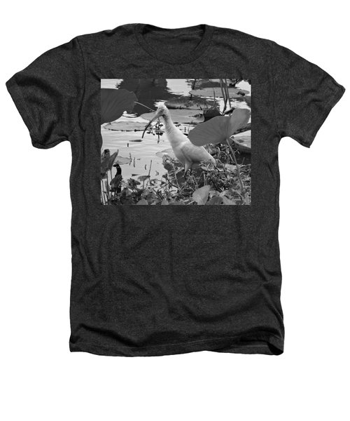 American White Ibis Black And White Heathers T-Shirt by Dan Sproul