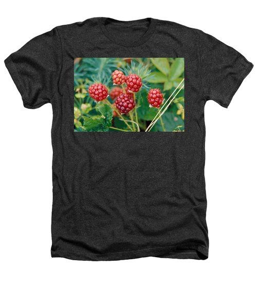 Highbush Blackberry Rubus Allegheniensis Grows Wild In Old Fields And At Roadsides Heathers T-Shirt by Anonymous