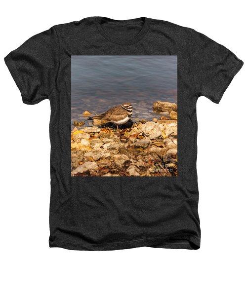 Kildeer On The Rocks Heathers T-Shirt by Robert Frederick