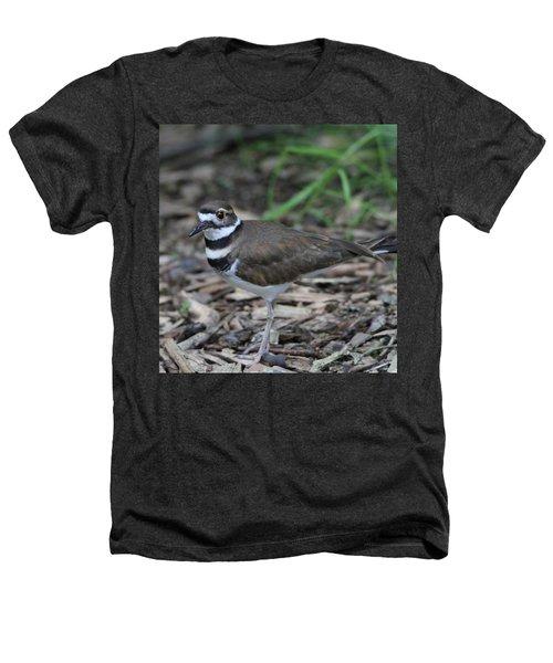 Killdeer Heathers T-Shirt by Dan Sproul