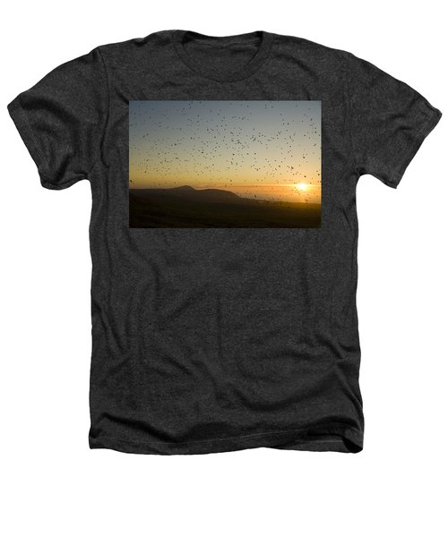 Least Auklets, Returning To Their Nest Heathers T-Shirt by Brian Guzzetti